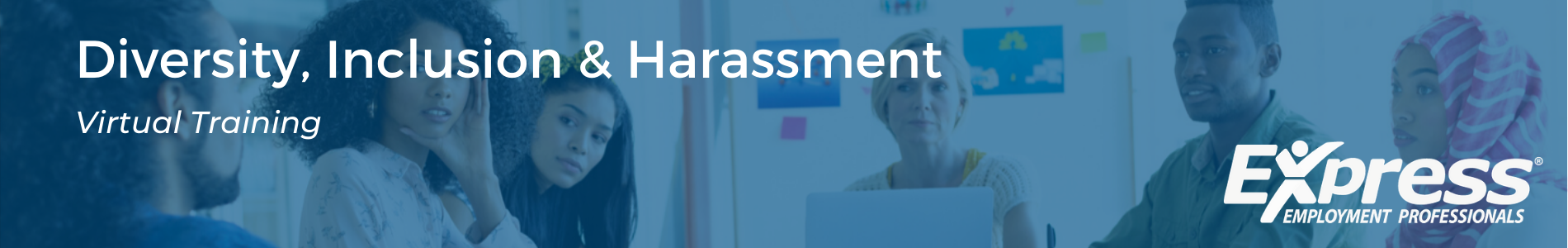 Virtual Training - Diversity, Inclusion, Harassment