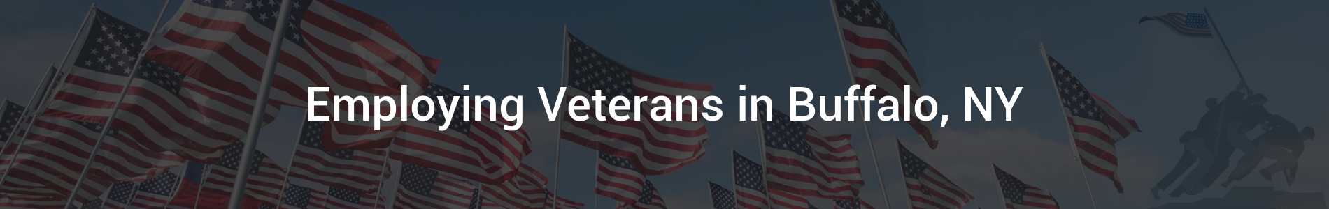 Employing Veterans - Internal Banner