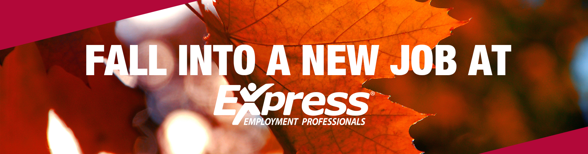 Fall Into A Job Banner 2
